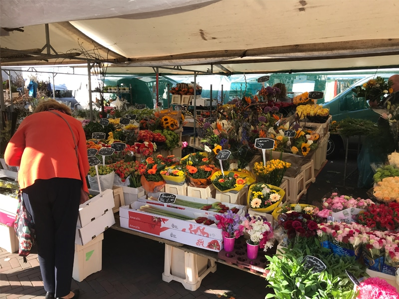 A woman selecting fresh flowers at the weekly market in Rotterdam.